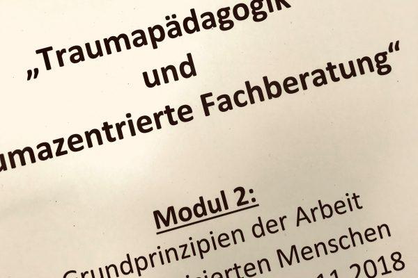 """Interne Weiterbildung """"Traumapädagogik und traumazentrierter Fachberatung"""" – Modul 2"""