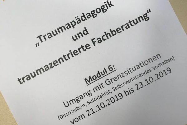"""Interne Weiterbildung """"Traumapädagogik und traumazentrierte Fachberatung"""" – Modul 6"""